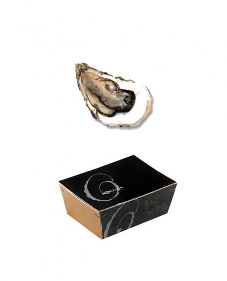 Ostriche Carantec della Bretagna del Nord - TITUS - confezione 2,5kg - 25-26 pezzi - Roman's F.lli Manno