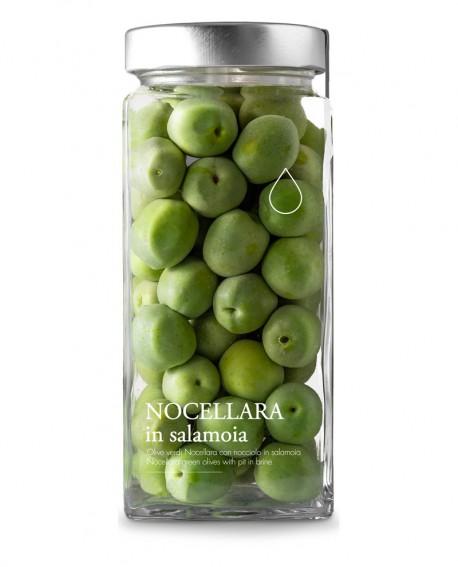 Olive verdi Nocellara in salamoia -1600g - Olio il Bottaccio