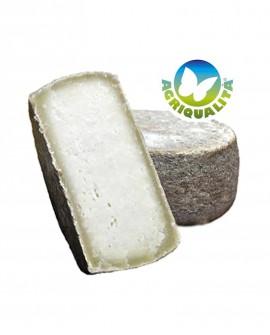 Cacio Amiatino stagionato 90 giorni in Grotta latte bovino Agriqualità - 1600 gr - Agrifood Toscana