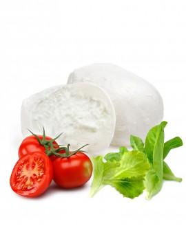 Mozzarella fior di latte sfusa in acqua gastronomia - 300g  in vaschetta da 3 Kg - Agrifood Toscana