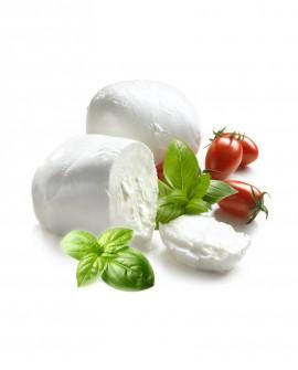 Mozzarella di Bufala DOP caseificio del Cilento - 250 g - vaschetta da 3 kg - Agrifood Toscana