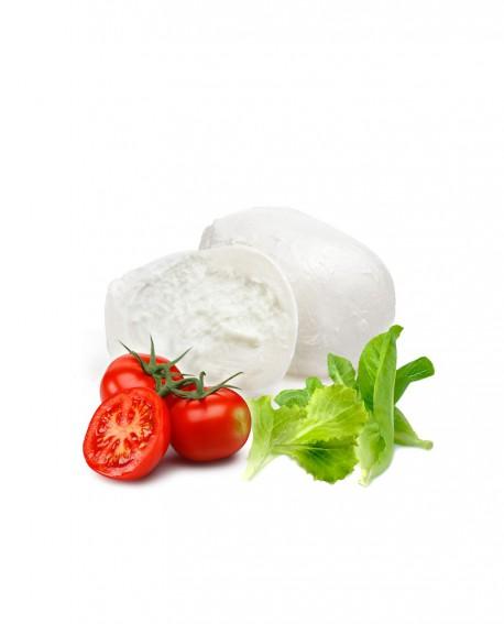 Mozzarella fior di latte sfusa in acqua gastronomia - 100g  in vaschetta da 2 Kg - Agrifood Toscana